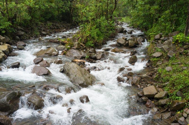 Wildwater royalty free stock photos