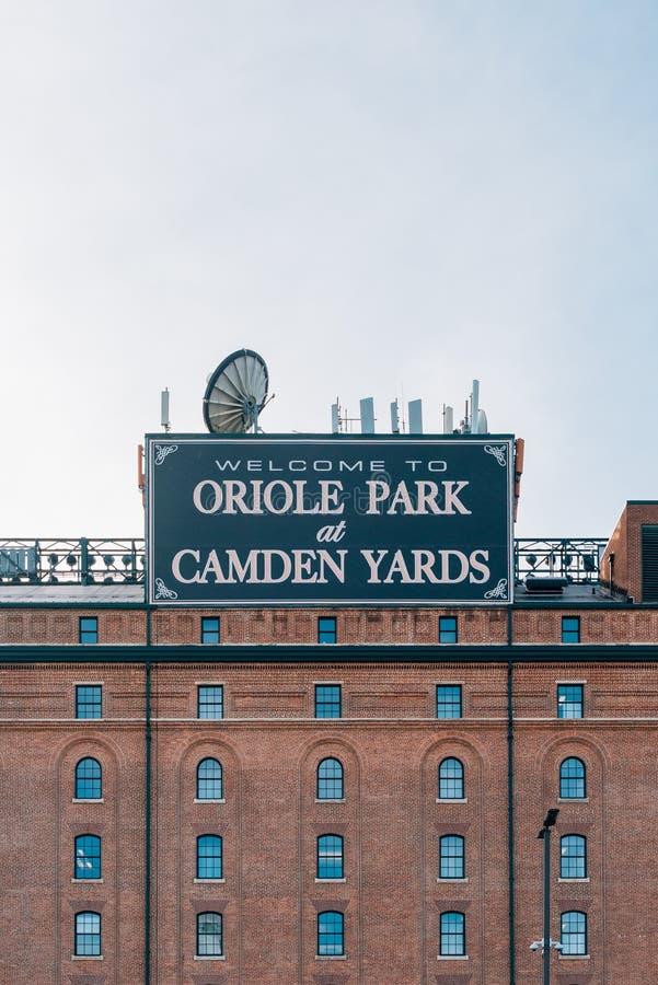 Wilga park przy Camden jardów stadionem baseballowym w Baltimore, Maryland zdjęcia stock