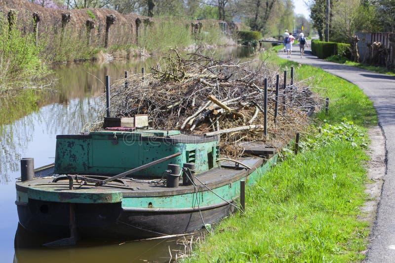 Wilgentakken op een ponton in Reeuwijk royalty-vrije stock afbeeldingen