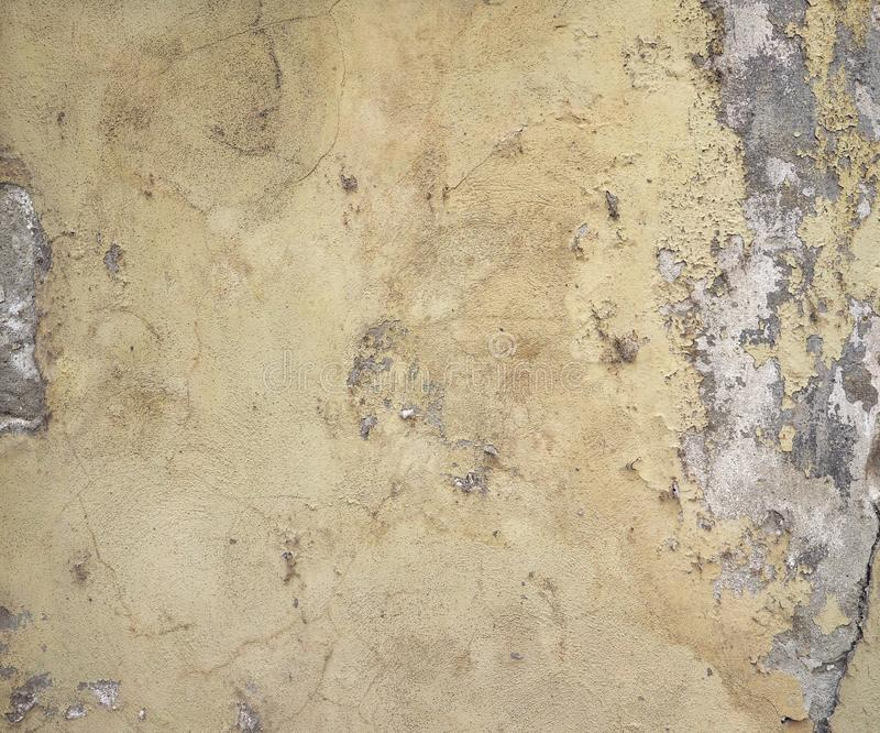 Wilgotna wilgoć na ścianie zdjęcia royalty free
