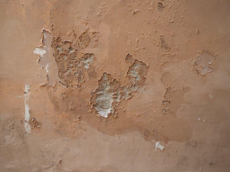 Wilgotna wilgoć na ścianie obraz royalty free