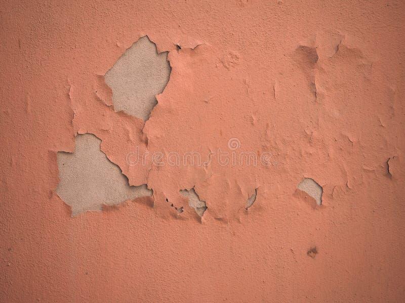 Wilgotna wilgoć na ścianie zdjęcie stock