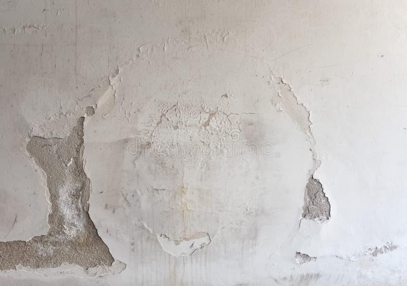 Wilgotna wilgoć na ścianie zdjęcia stock