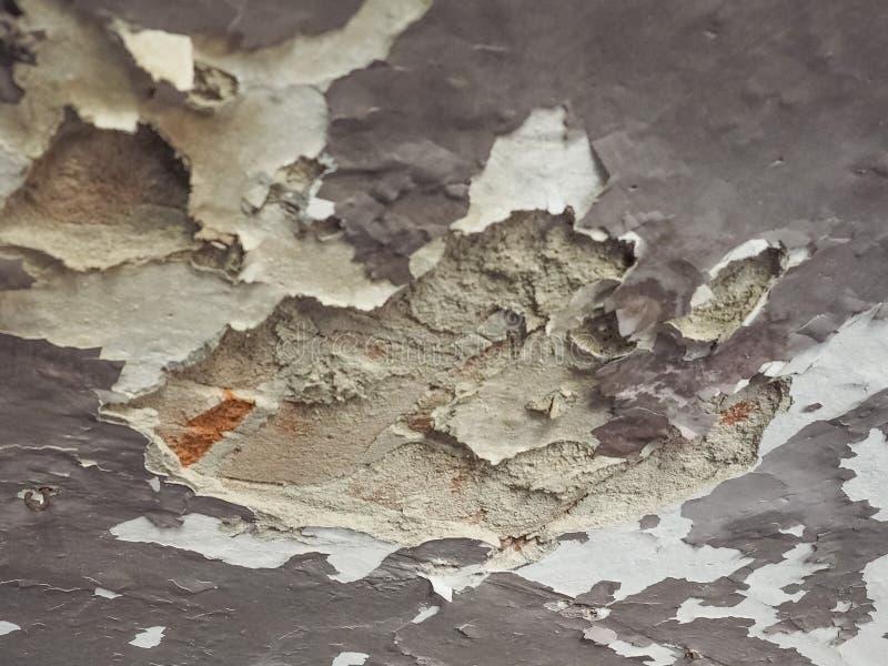 wilgotna wilgoć na ścianie i suficie obrazy royalty free