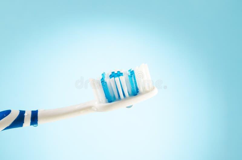 Wilgotny toothbrush na błękitnym tle, zakończenie w górę zdjęcia stock