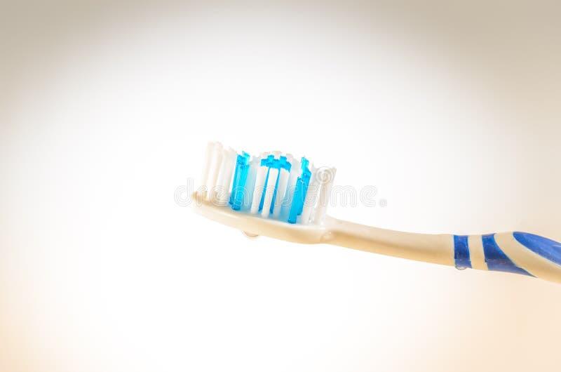 Wilgotny toothbrush na białym tle, zakończenie w górę zdjęcie royalty free