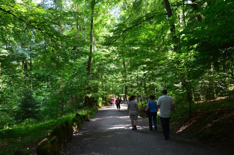 Wilhelmshoehe kasztelu park w Kassel, Niemcy zdjęcia stock
