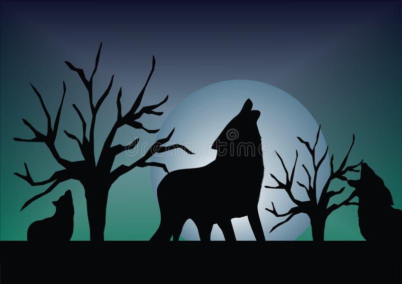 wilk ilustracji