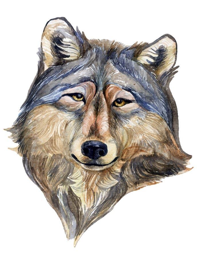 Wilk głowa royalty ilustracja