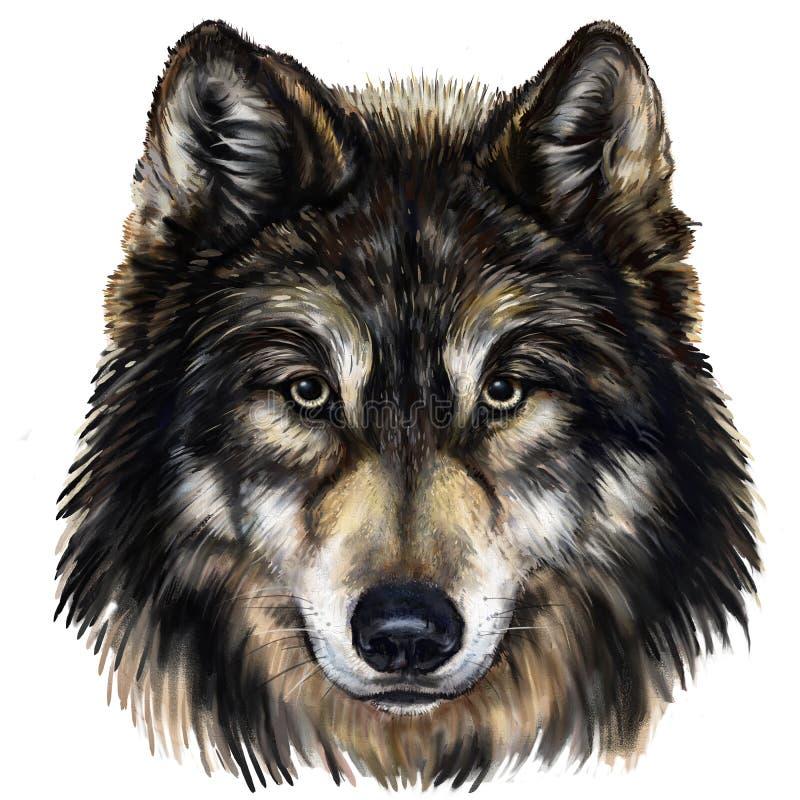 Wilk głowa ilustracja wektor