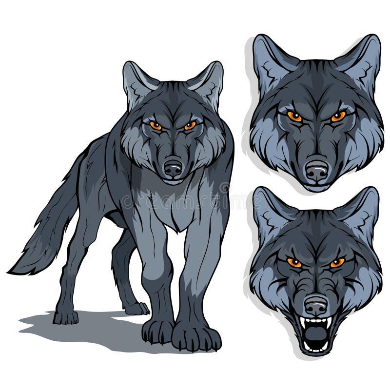 Wilk, odizolowywający na białych tle, colour ilustraci, stosownych jako logo lub drużyny maskotka, niebezpieczny lasowy drapieżni ilustracja wektor