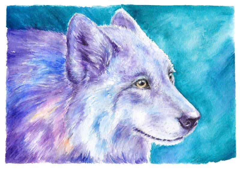 Wilk, szakal, pies, rysunkowa akwarela ilustracja wektor