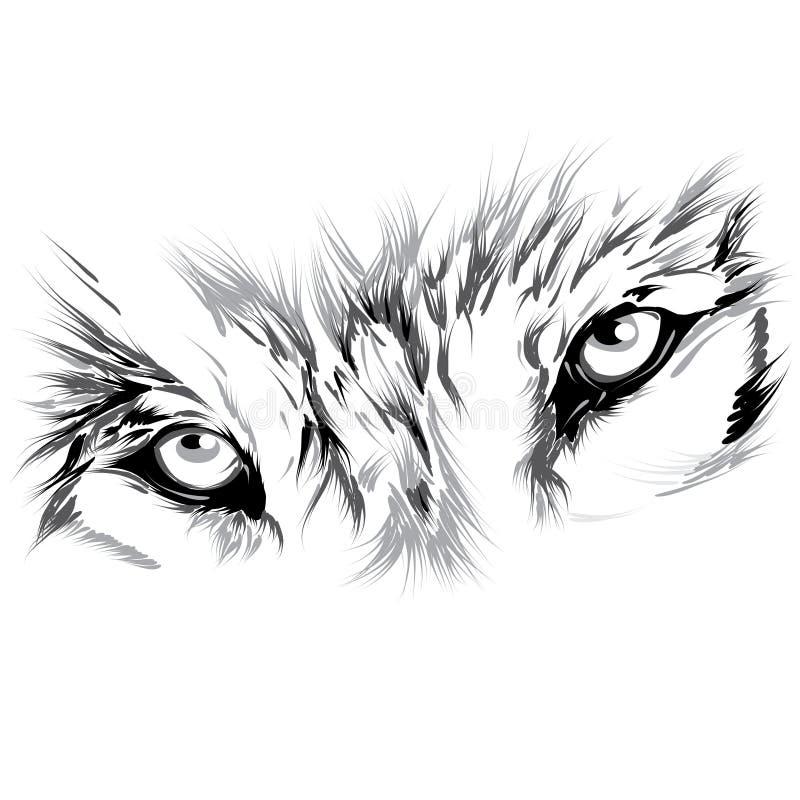 Wilk twarz ilustracja wektor