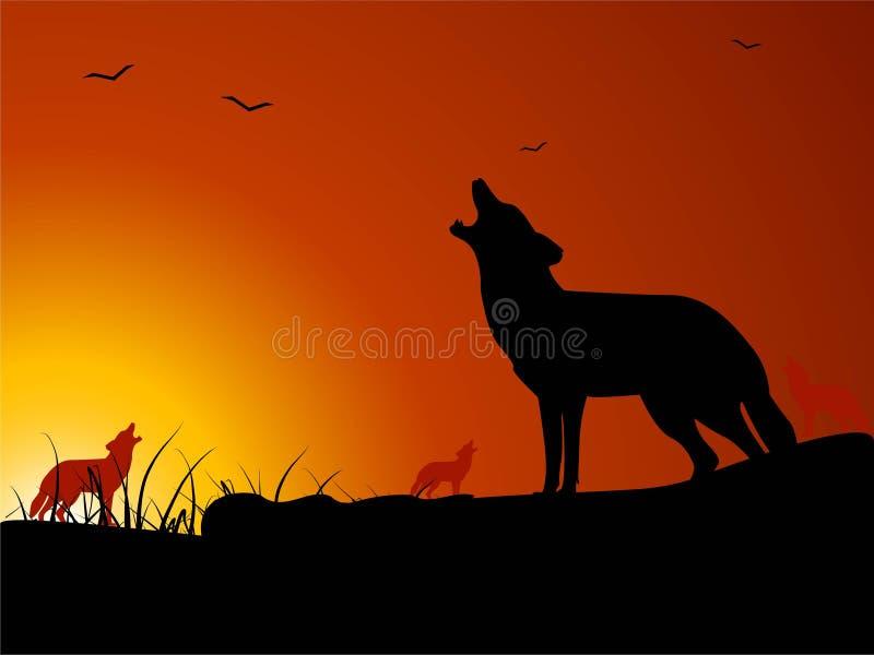 wilki wycie royalty ilustracja