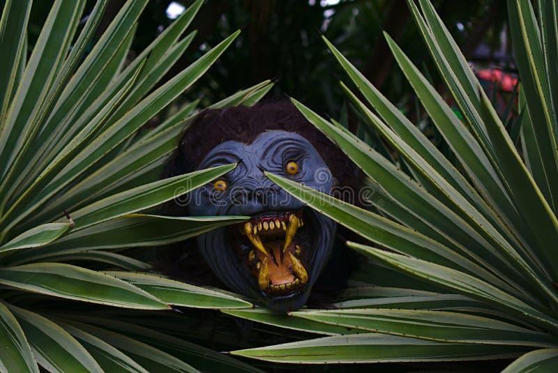 Wilkołak chuje za roślinami zdjęcie royalty free