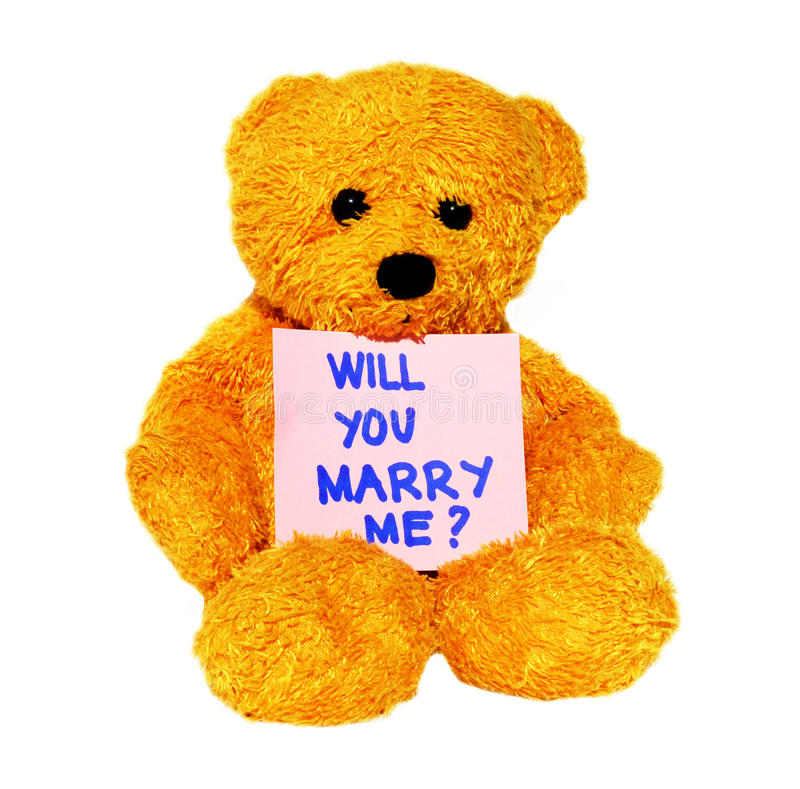 Will you marry me teddy