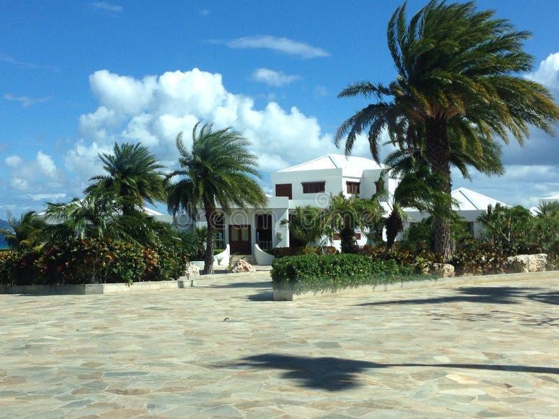 Willa Anguilla imagen de archivo