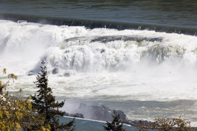 Willamette nedgångar i den Oregon staden, Oregon fotografering för bildbyråer