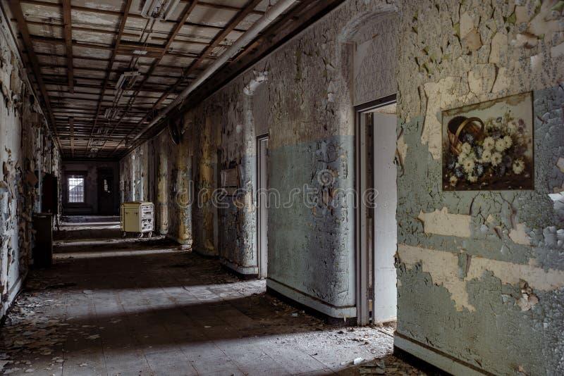 Willard Asylum per l'insano/ospedale statale - Willard, New York fotografia stock libera da diritti
