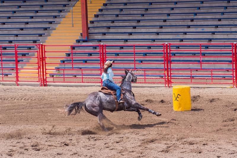Horse and rider race to barrel in barrel racing event. Williams Lake, British Columbia/Canada - June 19, 2016: horse and rider race to barrel in barrel racing royalty free stock image