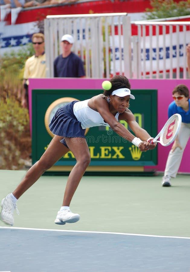 Williams Venus en el Fed Cup (285) imagen de archivo