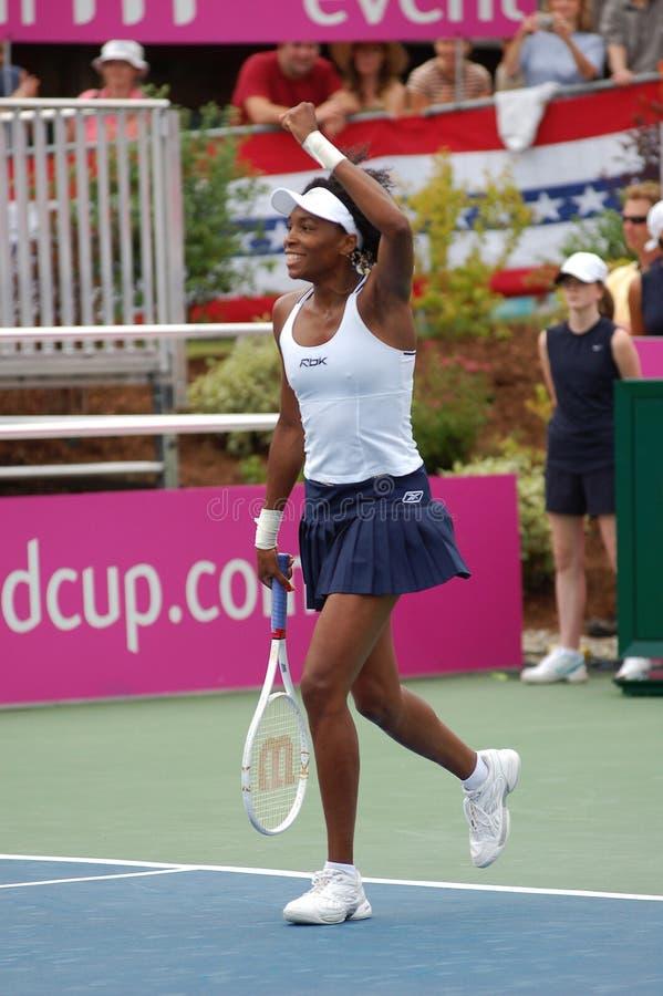 Williams Venus - grande campione (8) fotografia stock libera da diritti