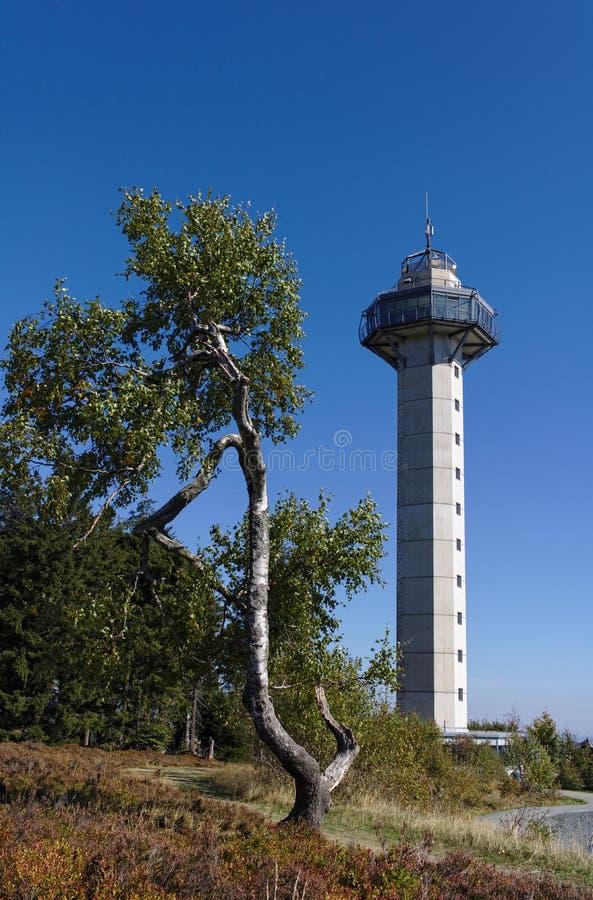 Willingen, Alemanha - 18 de setembro de 2018 - árvore de vidoeiro curvada ao lado da torre de Hochheide na cimeira da montagem Et imagens de stock