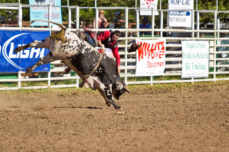 Download Willits Frontier Days Rodeo Editorial Photography - Image of horses, days: 20236832