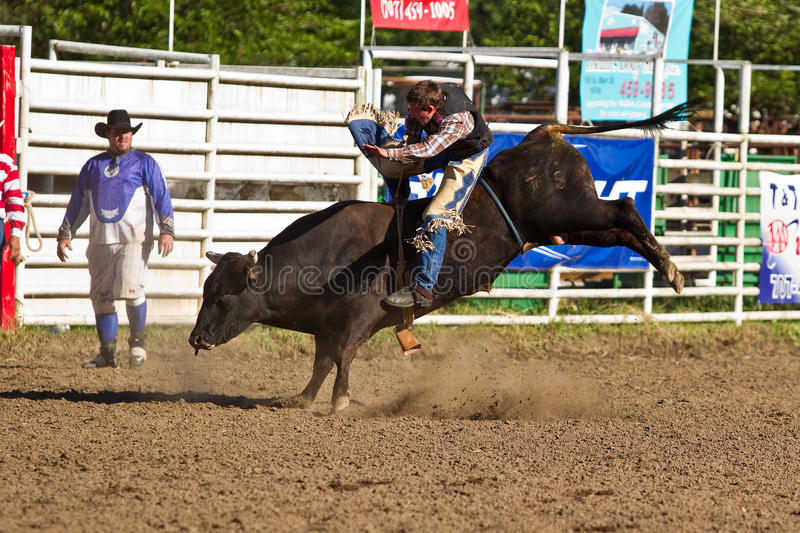 Download Willits Frontier Days Rodeo Editorial Photo - Image: 20236846