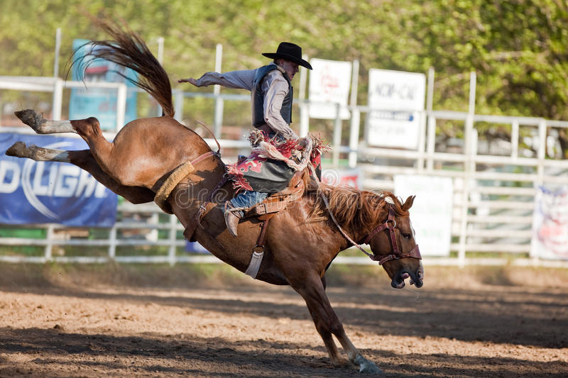 Download Willits Frontier Days Rodeo Editorial Stock Image - Image of rodeo, cowgirls: 20236869