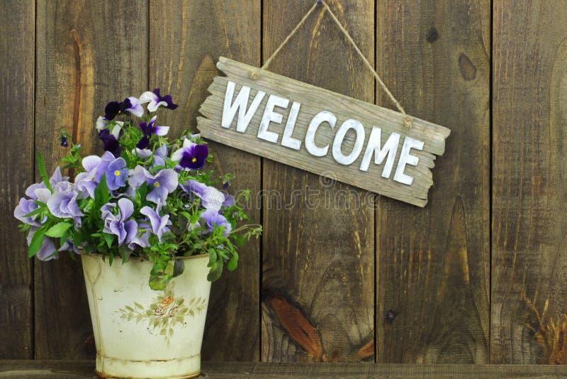 Willkommensschild, das durch Topf purpurrote Blumen (Pansies, hängt) lizenzfreies stockfoto
