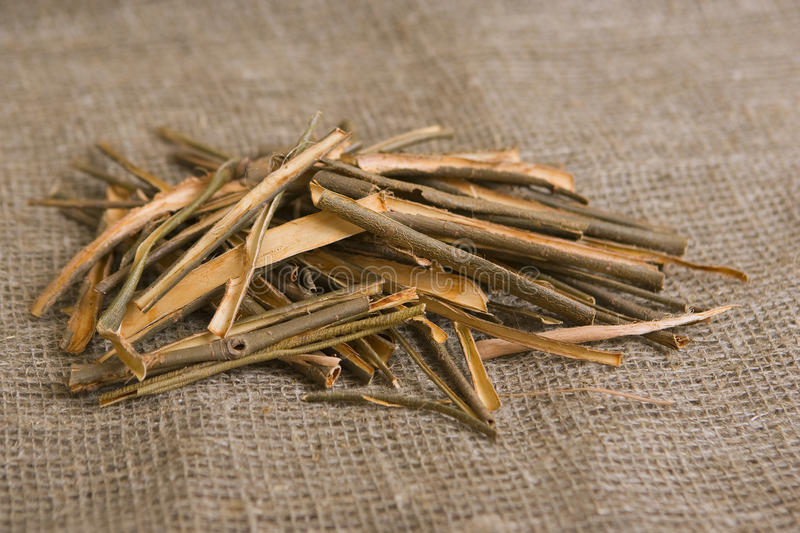 Willow bark medical. White willow bark medical herb, used in herbal medicine. Salix alba stock photo