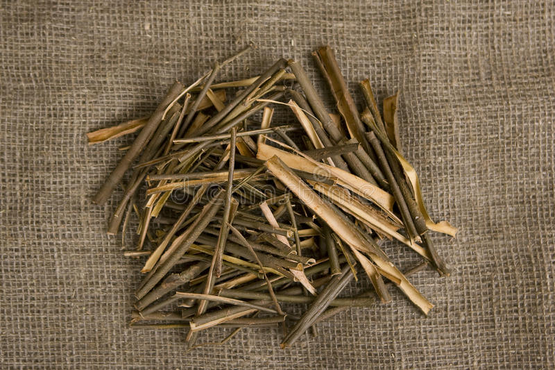 Willow bark medical. White willow bark medical, used in herbal medicine. Salix alba stock photo