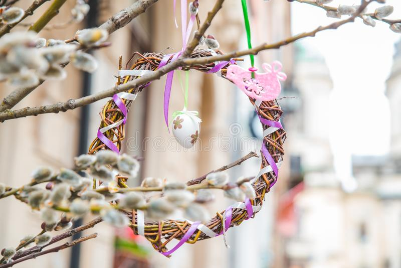 willow branch close up. spring is coming royalty free stock photos