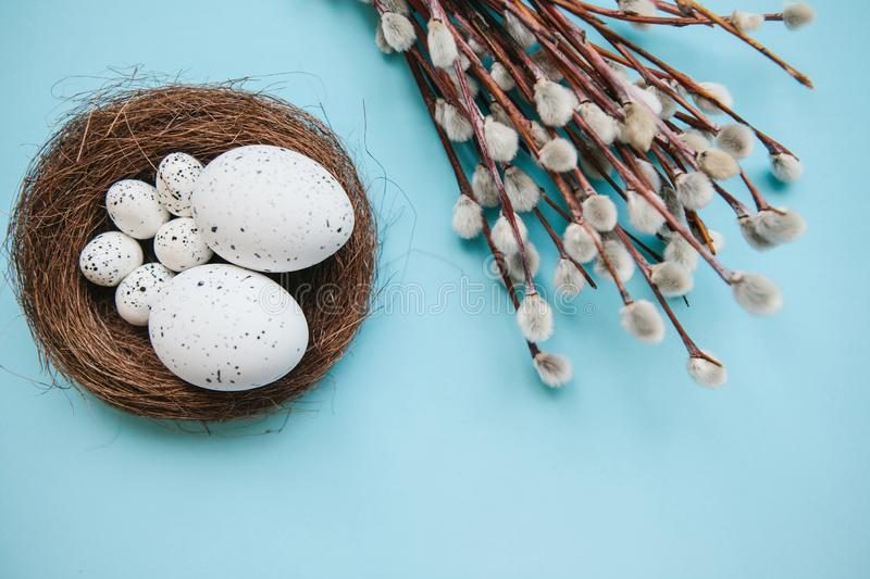 A willow branch and eggs. A willow branch with buds and eggs on a blue background. Easter celebration and the beginning of spring concept stock photos