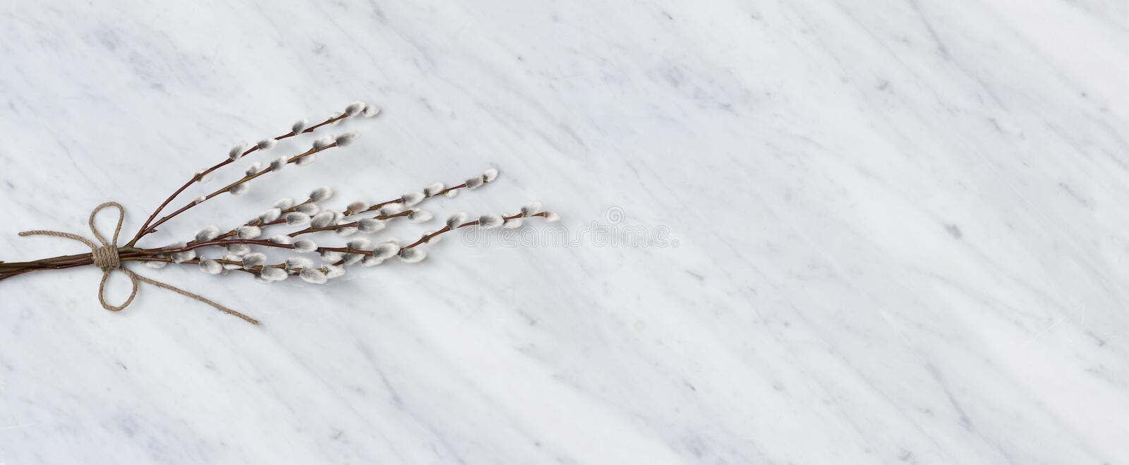 Willow branches on Carrara marble counter royalty free stock images