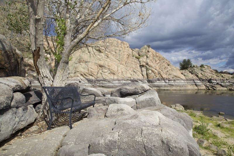 Willow Lake Park Bench