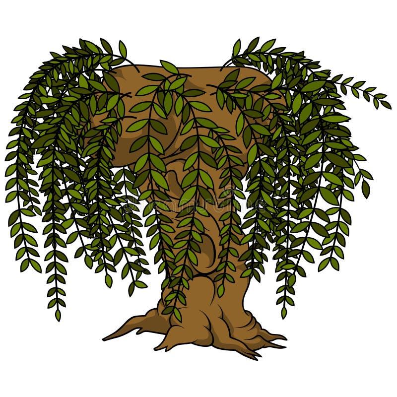 Willow Tree illustration libre de droits