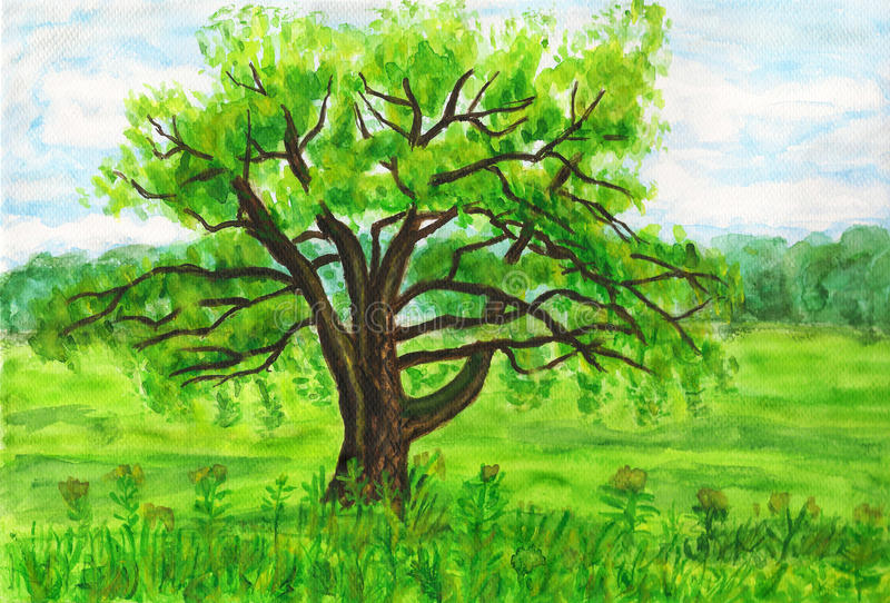 Download Willow tree, painting stock illustration. Image of green - 33121927
