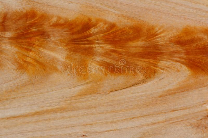 Willow wood texture royalty free stock photography