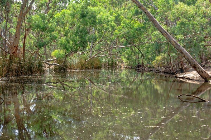 Wilpena Creek - Wilpena Pound. Wilpena Creek in the Flinders Ranges - Wilpena Pound, SA, Australia stock images
