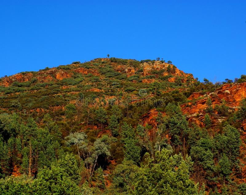 Wilpena Pound, Flinders Ranges. Part of the iconic Wilpena Pound in South Australia's Flinders Ranges stock photography