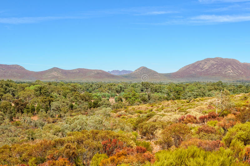 Wilpena Pound Range. View of Wilpena Pound Range from the Wangara Lookout track in the Flinders Ranges - Wilpena Pound, SA, Australia royalty free stock photography