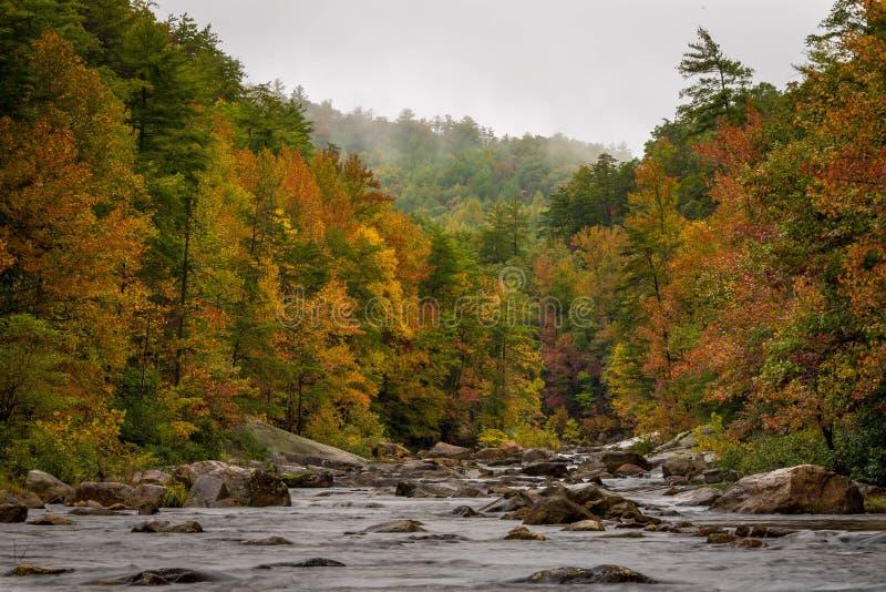 Wilson Creek Autumn 1 photo libre de droits