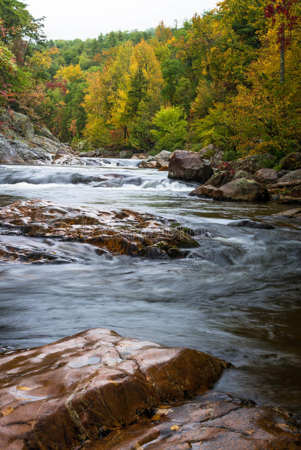 Wilson Creek Autumn 5 stockfotos