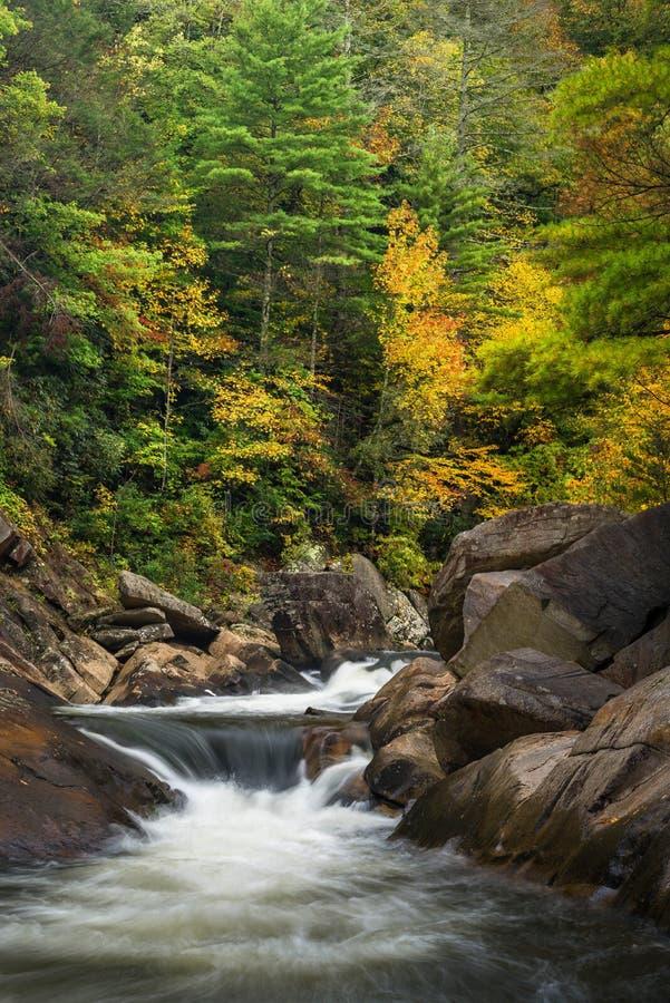 Wilson Creek Autumn 12 images stock