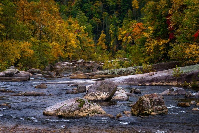 Wilson Creek Autumn 14 images libres de droits