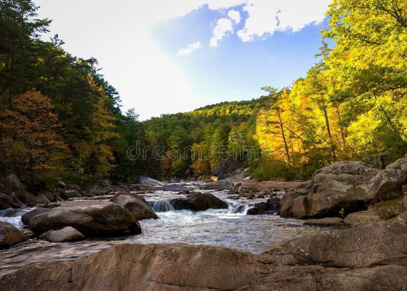Wilson Creek Autumn 2 photo stock