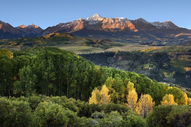 Wilson Peak, arbres de tremble de premier plan et Rolling Hills photo stock