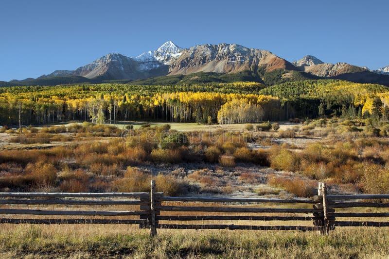 Wilson Peak et trembles jaunes avec la barrière de rail photographie stock libre de droits